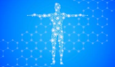 Das Endocannabinoid-System und seine Endocannabinoide